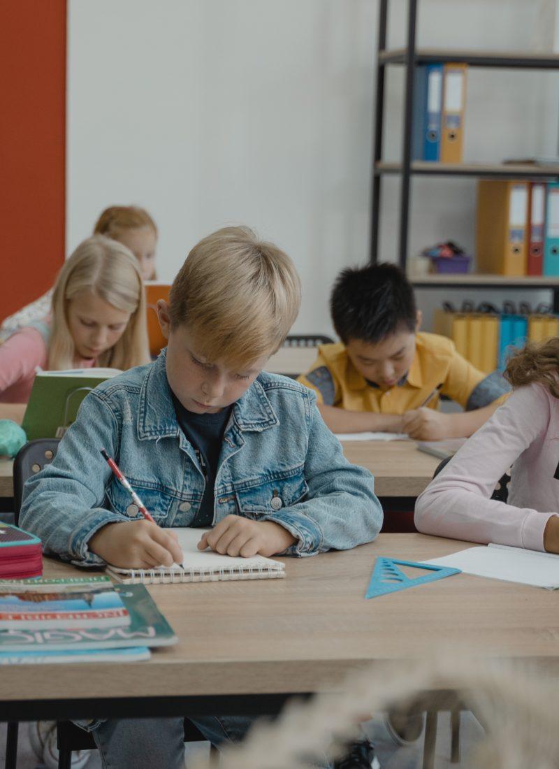 Schulanfang oder Studium – lernen, konzentrieren und Gehirnleistung steigern oder optimieren mit ätherischen Ölen